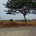 Tanah Industri Delta Silicon 3 Extension Lippo Cikarang